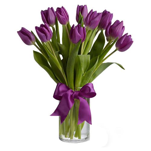 9 фиолетовых тюльпанов