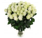 51 роза Аваланч 60 см
