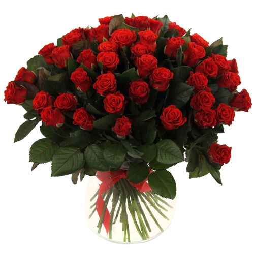 Роза Эль Торо 70 см