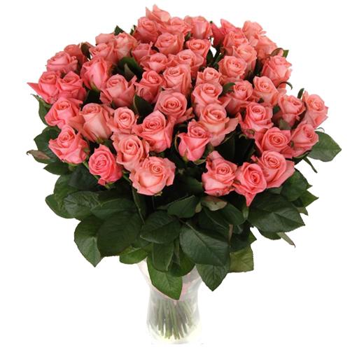 Роза Карина 70 см