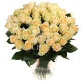 51 роза Пич Аваланч 60 см