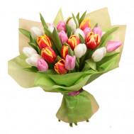 """Тюльпаны """"Брызги лета"""""""
