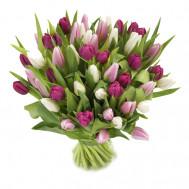 """Тюльпаны """"Признательность"""""""